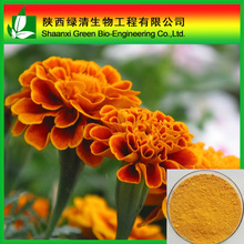 100% Pure Marigold extract Lutigold Lutein 5% 10% 20% with Free sample