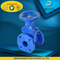 Flange Type Worm Gear Operated Gate Valve