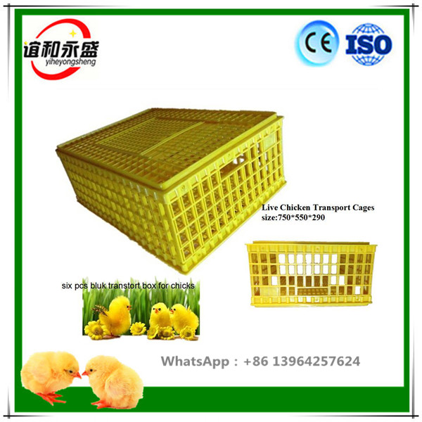 plastic Small folding chicken coop/poultry transport cage price WITH DURABLE METAL