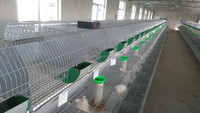 ISO approved supply high quality galvanized rabbit cage for wholesales rabbits breeding cages