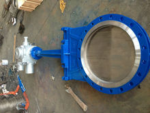 Gate valve with SS