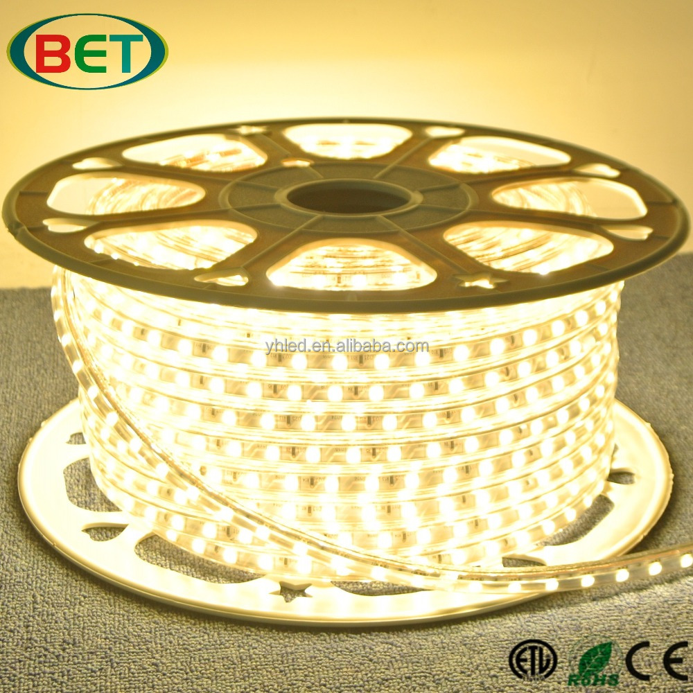 Shenzhenled Manufacturing Holiday Time Cool White Led Tape Flex High Voltage 110v led strip light For Rooms