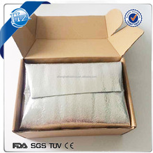 Insulated Bag in Box Cold Shipping of Frozen Food