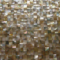 Brown lip mother of pearl shell mosaic wall tile background