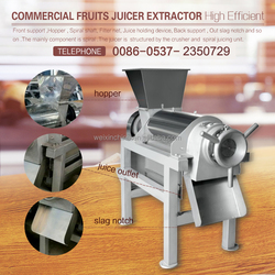 Fruit and Vegetable Automatic Industrial Juicer Machine