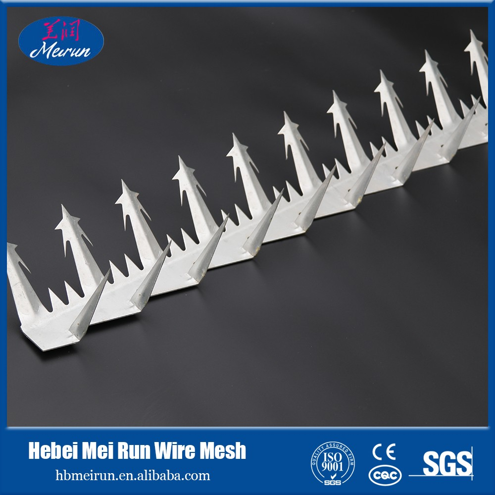 barbed wire fence/gi barbed wire/barbed wire razor wire mesh wall spike from Anping Factory