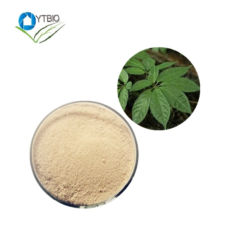 For Cosmetics And food Additives Panax Extract Powder of Notoginseng Leaf Triterpenes/ Panax Notoginseng Saponins