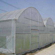 agricultural horticultural multi span plastic film greenhouse