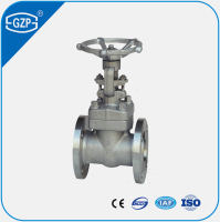 Forging Stainless Steel PN100 High Pressure Gate Valve with Flange End Connection
