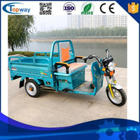 loading 800kg van cargo Three Wheel Electric Cargo Tricycle For Sale