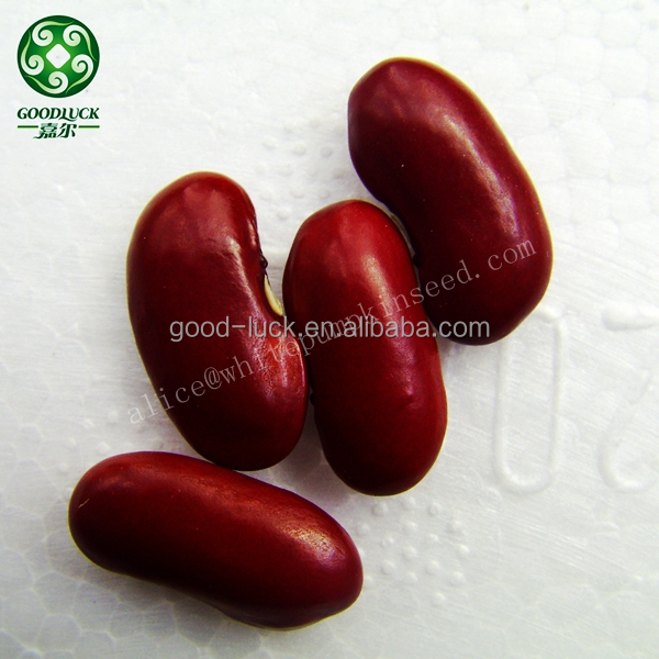 2014 Crop Heilongjiang Origin Red Kidney Beans Price
