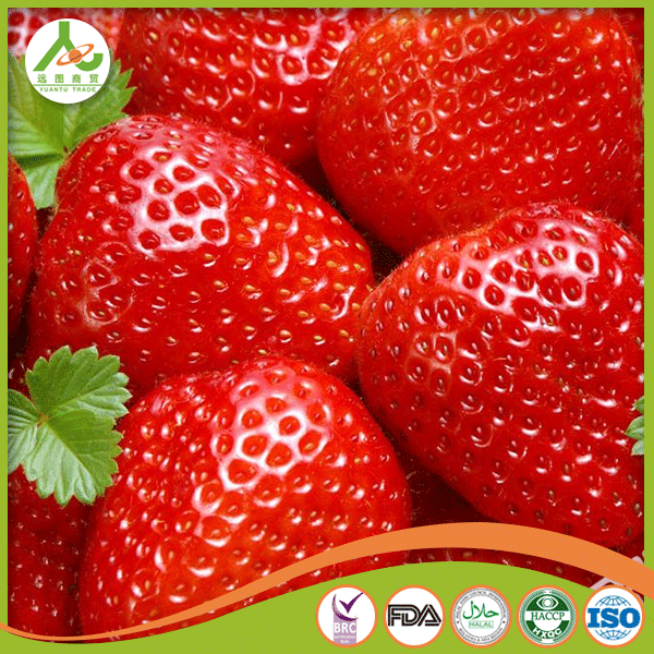 Best quality wholesale price for kiwi fruits frozen strawberry with BRC certificate
