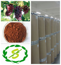 Grape seed extract with Polyphenols 95% by UV