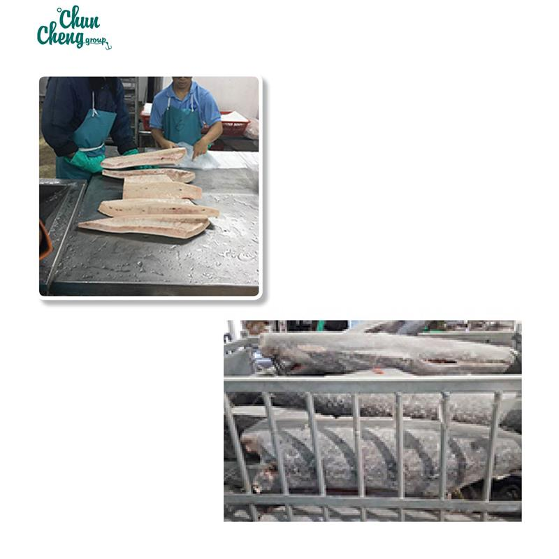 Professional manufacturer w/r iqf frozen spanish mackerel With CE and ISO9001