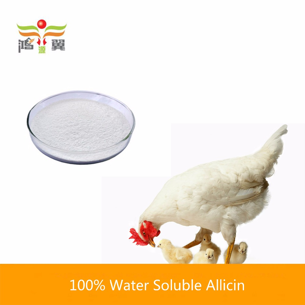 China wholesale 100% pure garlic extract allicin organic chicken feed for Increase appetite
