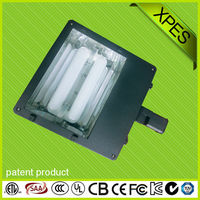 customizing take place of led induction shoe box fixture