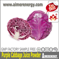 Rolling up the delicious and nutritious purple cabbage concentrate powder