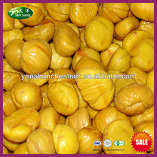 Frozen Sweet Chestnut Kernel for Sale