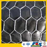 Hot Dipped Galvanzied Hexagonal Wire Netting/Mesh