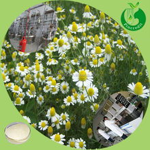 Best price apigenin 98% german chamomile extract