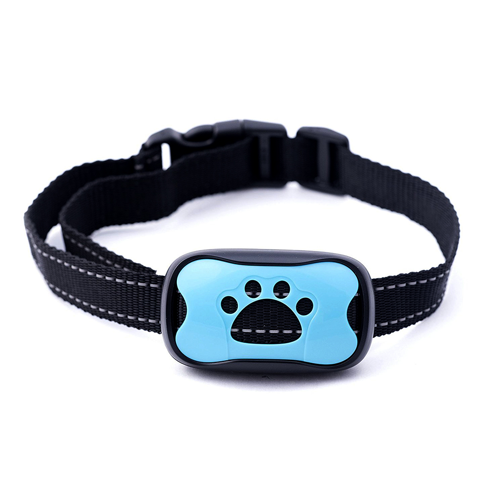 Battery Replaceable Specialized Decorative No Shock Dog Collar