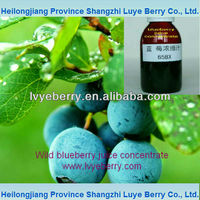 wild blueberry fruit juice concentrate 65Brix