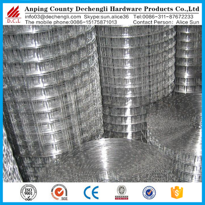 AISI 304 1/2 inch stainless steel welded wire mesh