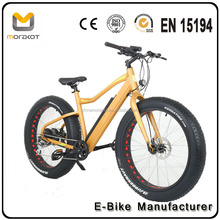 2017 Morakot FT1 China Factory For Adult Lithium Battery 26inch Pitbike Bafang Motor 350W Beach Cruiser Electric Bike