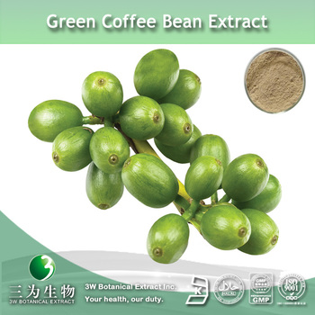 Green coffee bean Extract (50%chlorogenic acid)supplied by 3W Manufacturer