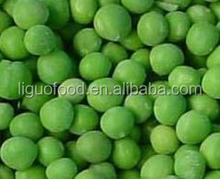 Frozen fresh IQF green peas
