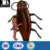 heavy-duty vinyl inflatable cockroach pool float durable plastic inflatable giant cockroach raft island swimming pool toys