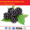 Hei Mei Best Price Health Care Blackberry Extract Products
