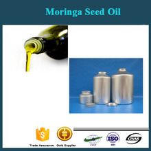 Unusual CE Approve Moringa Seeds Oil Press/Oil Pressing Equipment For Moringa Seeds for sale with CE approved