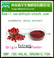 5% Anthocyanidins Cranberry Juice Extract