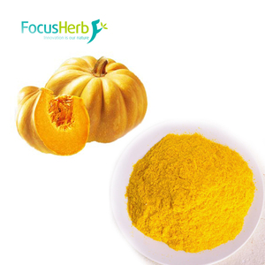 Competitive price Chinese supplier pumpkin powder