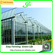 Large size and multi-span agriculture greenhouse,venlo/arch type green house