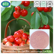 Instant Acerola Cherry Powder for Energy Drink