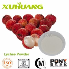 Lychee Seed Powder/ Pure Lychee Juice Extract/Natural Lychee Juice Powder