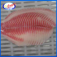 natural flavor tasty frozen kosher tilapia fillet
