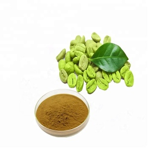 100% Pure Natural Chlorogenic acid 50% Green Coffee bean extract