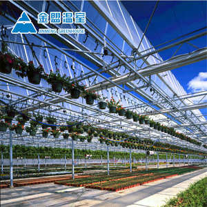China hot sale PC sheet commercial green house for agriculture plant growth