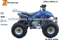 Cool Cheap for Adults 110cc atv