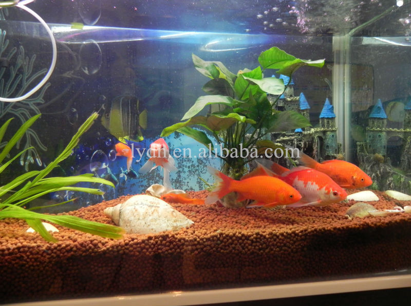 Aquarium soil for live aquarium plants in aquaponics fish for Black sand fish tank
