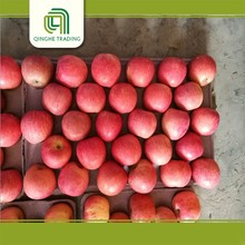 cheap chinese fruits fresh red fuji apple for wholesales