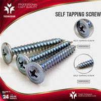 New design galvanized self tapping screws carbon phillips head self tapping screw and nut made in China