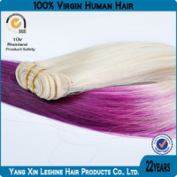 100% Remy Hair Tangle Free Two-Tone Color Hair Catalog
