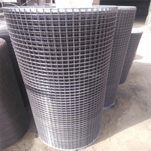 China professional cheap aviary wire mesh/Steel wire welded mesh on sale