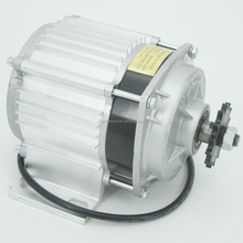 750W 48V electric tricycle DC brushless gear motor