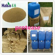 Habio Alkaline Protease enzyme for Feed/Textile/Detergent/Alcohol Brewing/Flour Processing