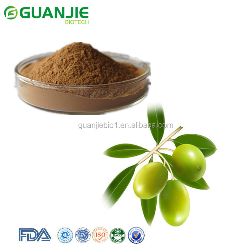GUANJIE manufactory supply high quality olive leaf extract / oleuropein 25%